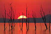 Kariba gives one of her daily dramas, a magnificent sunset. Every day has a different sunset.