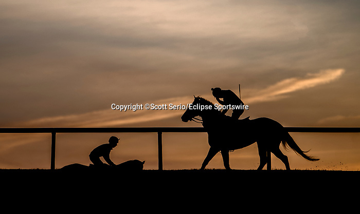 March 18, 2020 : Horses train at sunrise as life goes on at Fair Hill Training Center in Fair Hill, Maryland. While no spectators are allowed at any race facility in the United States, or the world essentially, during the coronavirus pandemic, the horses still need to train and exercise. The Fair Hill Trainer Center in Cecil County in Maryland is still open for business and the equine athletes remain active through the COVID-19 crisis. Scott Serio/Eclipse Sportswire/CSM