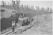 New Mexico Lumber Co. #4 (ex-D&amp;RGW #227) rolled over due to soft roadbed.<br /> New Mexico Lumber Co.  San Juan National Forest, MP 10.4, CO  Taken by Long, Morris - 6/28/1927