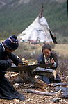 A Tsaatan settlement in Northern outer Mongolia/ Russian border. Cutting  fuel wood.