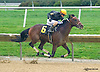 Pea Shooter Pro winning at Delaware Park on 10/3/15