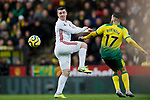 John Fleck of Sheffield United and Emi Buendia of Norwich City battle for the ball during the Premier League match at Carrow Road, Norwich. Picture date: 8th December 2019. Picture credit should read: James Wilson/Sportimage