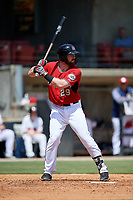 Carolina Mudcats Pat McInerney (29) at bat during a Carolina League game against the Winston-Salem Dash on August 14, 2019 at Five County Stadium in Zebulon, North Carolina.  Winston-Salem defeated Carolina 4-2.  (Mike Janes/Four Seam Images)