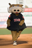 Wally the Warthog performs during the always popular mascot race between innings at Ernie Shore Field in Winston-Salem, NC, Saturday, May 10, 2008.