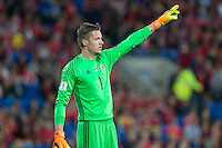 Wayne Hennessey of Wales during the FIFA World Cup Qualifier match between Wales and Moldova at Cardiff City Stadium, Cardiff, Wales on 5 September 2016. Photo by Mark  Hawkins.