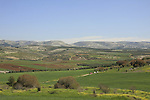 Israel, Shephelah, Elah valley by Tel Adullam