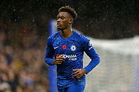 9th November 2019; Stamford Bridge, London, England; English Premier League Football, Chelsea versus Crystal Palace; Tammy Abraham of Chelsea - Strictly Editorial Use Only. No use with unauthorized audio, video, data, fixture lists, club/league logos or 'live' services. Online in-match use limited to 120 images, no video emulation. No use in betting, games or single club/league/player publications