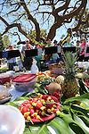 Potluck at Santa Barbara Ukulele Club