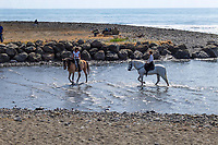 Horses cool the heels in the Mediterranean near Puerto Banus, Spain, when out for a Sunday canter along the Costa del Sol. 23rd April 2017, 201704233482<br /> <br /> Copyright Image from Victor Patterson, 54 Dorchester Park, <br /> Belfast, UK, BT9 6RJ<br /> <br /> t1: +44 28 9066 1296 (from Rep of Ireland 048 9066 1296)<br /> t2: +44 28 9002 2446 (from Rep of Ireland 048 9002 2446)<br /> m: +44 7802 353836<br /> <br /> e1: victorpatterson@me.com<br /> e2: victorpatterson@gmail.com<br /> <br /> www.victorpatterson.com<br /> <br /> Please see my Terms and Conditions of Use at www.victorpatterson.com. It is IMPORTANT that you familiarise yourself with them.<br /> <br /> Images used on the Internet must be visibly watermarked i.e. © Victor Patterson within the body of the image and copyright metadata must not be deleted. Images used on the Internet have a size restriction of 4kbs and will be chargeable at current NUJ rates unless agreed otherwise.<br /> <br /> This image is only available for the use of the download recipient i.e. television station, newspaper, magazine, book publisher, etc, and must not be passed on to any third party. It is also downloaded on condition that each and every usage is notified within 7 days to victorpatterson@me.com<br /> <br /> The right of Victor Patterson to be identified as the author is asserted in accordance with The Copyright Designs And Patents Act (1988).