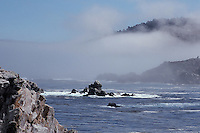Lifting fog, Point Lobos