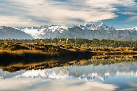 Views of Franz Josef Glacier and Southern Alps across coastal lagoon near Okarito, Westland Tai Poutini National Park, West Coast, UNESCO World Heritage Area, New Zealand, NZ