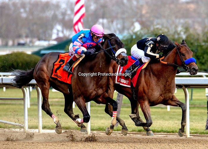 DECEMBER 01, 2018 : Marley's Freedom, ridden by Mike Smith, wins the Go for Wand Handicap at Aqueduct Racetrack on December 24, 2018 in Ozone Park, NY. Dan Hearyi/ESW/CSM