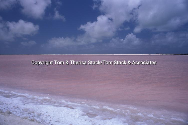 Salt evaporation ponds, Bonaire, Netherlands Antilles