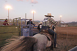 Team ropers at the gate, Minden Ranch Rodeo at the county fairgrounds in Gardnerville, Nevada.
