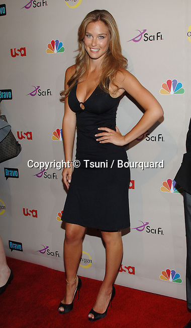 Bar Refaeli  - <br /> NBC  - tca Summer Party 2008 at Beverly Hilton In Los Angeles<br /> <br /> full length<br /> eye contact<br /> smile