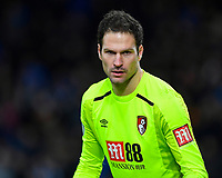 Asmir Begovic of AFC Bournemouth during AFC Bournemouth vs Stoke City, Premier League Football at the Vitality Stadium on 3rd February 2018