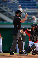 Umpire Jesse Busch calls a strike during a NY-Penn League game between the Williamsport Crosscutters and Batavia Muckdogs on August 25, 2019 at Dwyer Stadium in Batavia, New York.  Williamsport defeated Batavia 10-3.  (Mike Janes/Four Seam Images)