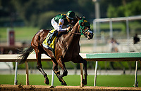 ARCADIA, CA - SEPTEMBER 30: Bolt d'Oro #3 with Corey Nakatani easily wins the Frontrunner Stakes at Santa Anita Park on September 30, 2017 in Arcadia, California. (Photo by Alex Evers/Eclipse Sportswire/Getty Images)