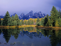 Tetons Reflecting in pond, Schwabacher Landing, Grand Teton NP,Wyoming, September 2005