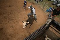 True Grit Bull Camp - Day 2 - 5.17.2015