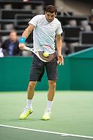 12-02-13, Tennis, Rotterdam, ABNAMROWTT, Grigor Dimitrov
