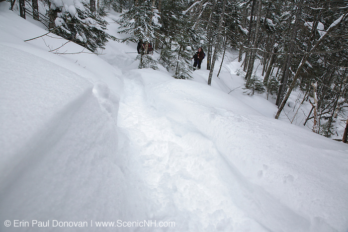 Hikers snowshoeing on the Hancock Loop Trail in the White Mountains, New Hampshire USA during the winter months.