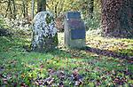 Swanborough Tump, Swinbeorg 850AD, Anglo Saxon meeting place, near Woodborough, Wiltshire, England, UK