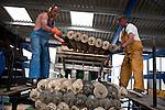 récupération des naissaims d'huitres issu du captage naturel. les naissaims seront ensuite revendus aux ostréiculteurs qui ne pratiquent pas cette méthode.