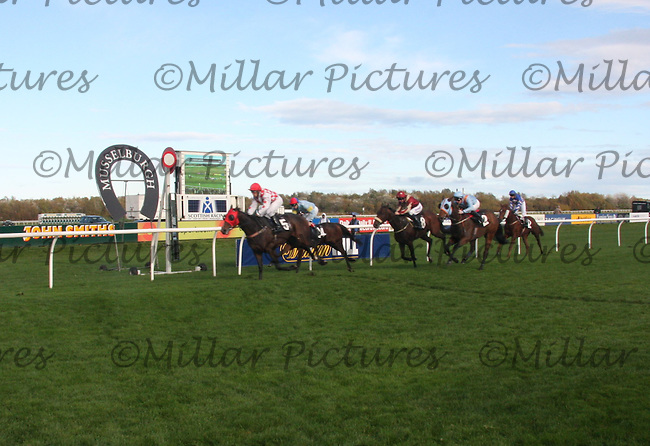 Military Call trained by Alistair Whillans at Hawick with justin Newman up finishing in 3rd in the William Hill sponsored race at Musselburgh Races on 26.10.11.