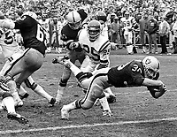 Oakland Raiders Mark Van Eeghan scores TD againts the Minnesota Vikings...(1972 photo/Ron Riesterer)