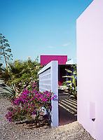 In this desert garden walls painted pink and blue create a stunning backdrop for cacti and exotic plants growing amongst the gravel