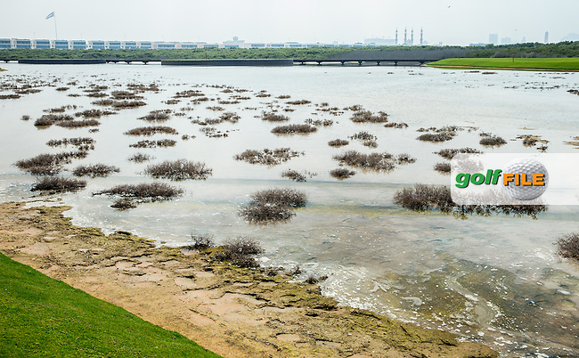 View of the tide-filled pond adjacent to the 2nd at Al Zorah Golf Club, Dubai, United Arab Emirates.  26/01/2016. Picture: Golffile | David Lloyd<br /> <br /> All photos usage must carry mandatory copyright credit (&copy; Golffile | David Lloyd)