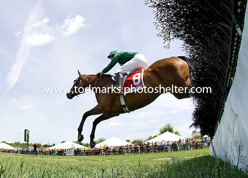 Quiet Approval wins the Milfern Cup at Rador in May.