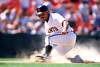 SAN FRANCISCO, CA - Marvin Benard of the San Francisco Giants slides home safely during a game at Candlestick Park in San Francisco, California in 1996. Photo by Brad Mangin