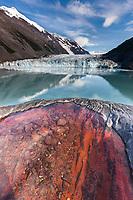 Tidewater face of Cascade glacier, Barry Arm, Chugach National Forest, Prince William Sound, southcentral, Alaska.