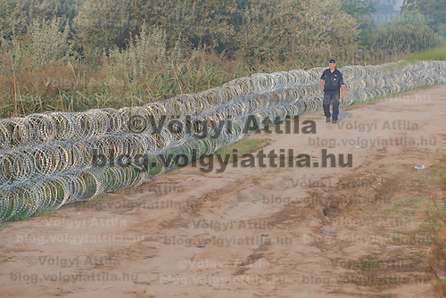 Police officer patrols next to the razor wire fence built on the border between Hungary and Serbia near Asotthalom (about 190 km South of capital city Budapest), Hungary on August 30, 2015. ATTILA VOLGYI