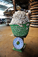 Basket of silkworm cocoons on scales. Da Lat, Vietnam
