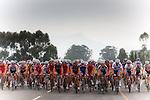 Giro Del Capo Cycling Rcae, Cape Town 2010