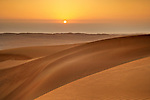 Sand Dunes at sunset. Wahiba Sands. Oman.