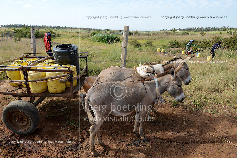 KENYA, Mount Kenya East, Region South Ngariama , people transport water over long distances / KENIA, Dorfbewohner transportieren Wasser ueber weite Entfernungen