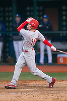 Dale Wickham (19) of the Cornell Big Red follows through on his swing against the Seton Hall Pirates at The Ripken Experience on February 27, 2015 in Myrtle Beach, South Carolina.  The Pirates defeated the Big Red 3-0.  (Brian Westerholt/Four Seam Images)