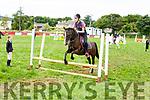 Warm ups fro the horses at the Killorglin horse and pony show on Sunday.