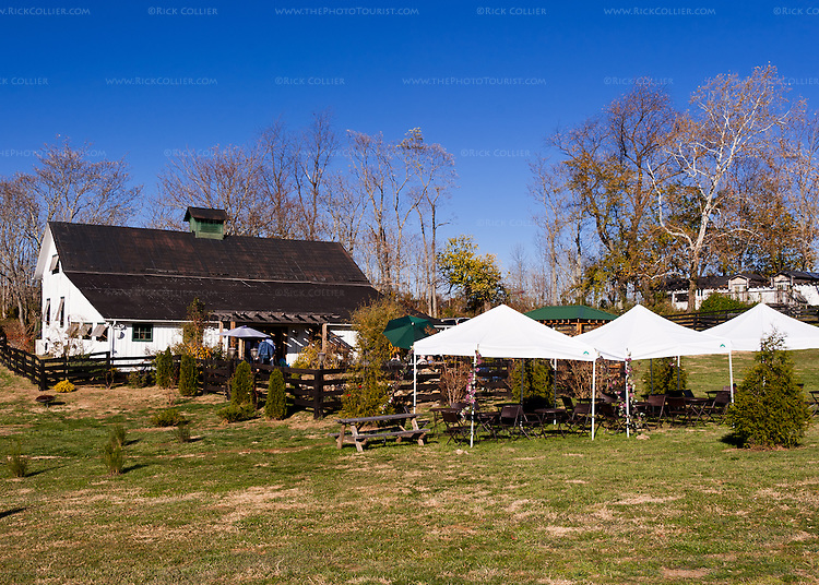 Event tents stand ready behind the back yard at Aspen Dale Winery.