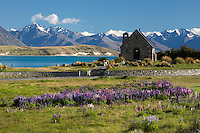 New Zealand, South Island, Canterbury region: Church of the Good Shepherd at Lake Tekapo | Neuseeland, Suedinsel, Region Canterbury: Church of the Good Shepherd am Lake Tekapo