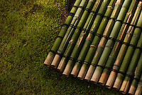 A bamboo mat makes a subtle contrast against the green moss at a Kyoto garden.