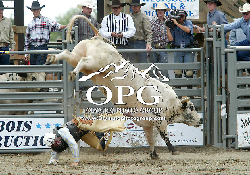 28 August, 2005: Bonner Bolton riding the bull Mud Pack can't hold on during the Extreme Bulls competition Sunday at the Kitsap County Fair Grounds, Bolton was not able to hang on for the mandatory 8 seconds.