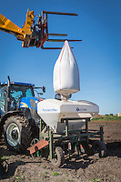 Loading base fertilser into front mounted hopper - Suffolk, April