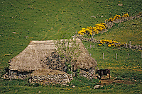 Europe/France/Auvergne/15/Cantal/Paulhac : Ancien buron en chaume