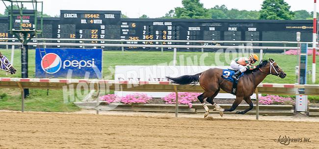 Indian Lover winning at Delaware Park on 7/22/17