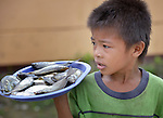 A boy holds fish he is selling on Jinamoc Island, part of the municipality of Basey in the Philippines province of Samar that was hit hard by Typhoon Haiyan in November 2013. The storm was known locally as Yolanda. The ACT Alliance has been providing a variety of forms of assistance to survivors here, including a cash for work program that pays local residents to saw up downed and damaged coconut trees to provide lumber for shelter construction. Coordinated by the National Council of Churches in the Philippines, the recovery program includes shelter construction, livelihood generation, reforestation, and assistance to women's and farmers' groups. Finn Church Aid will assist with school construction, and Norwegian Church Aid will help residents build permanent comfort rooms (toilets).
